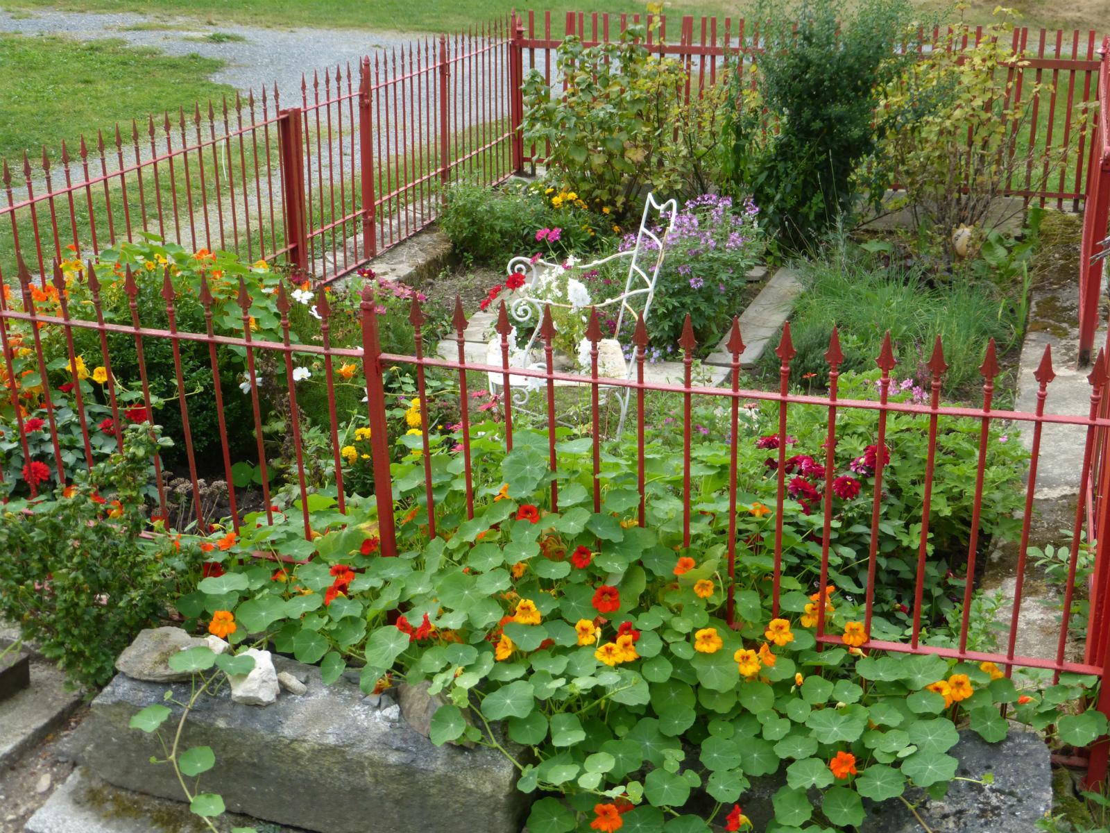 Hammerschmiede-Unser-Haus-Garten-mit-Blumen
