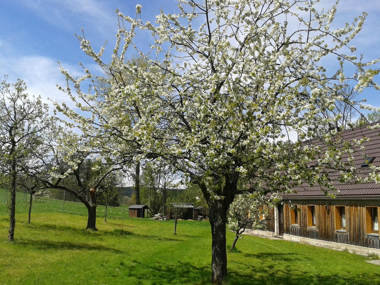 Hammerschmiede-Unser-Haus-Garten