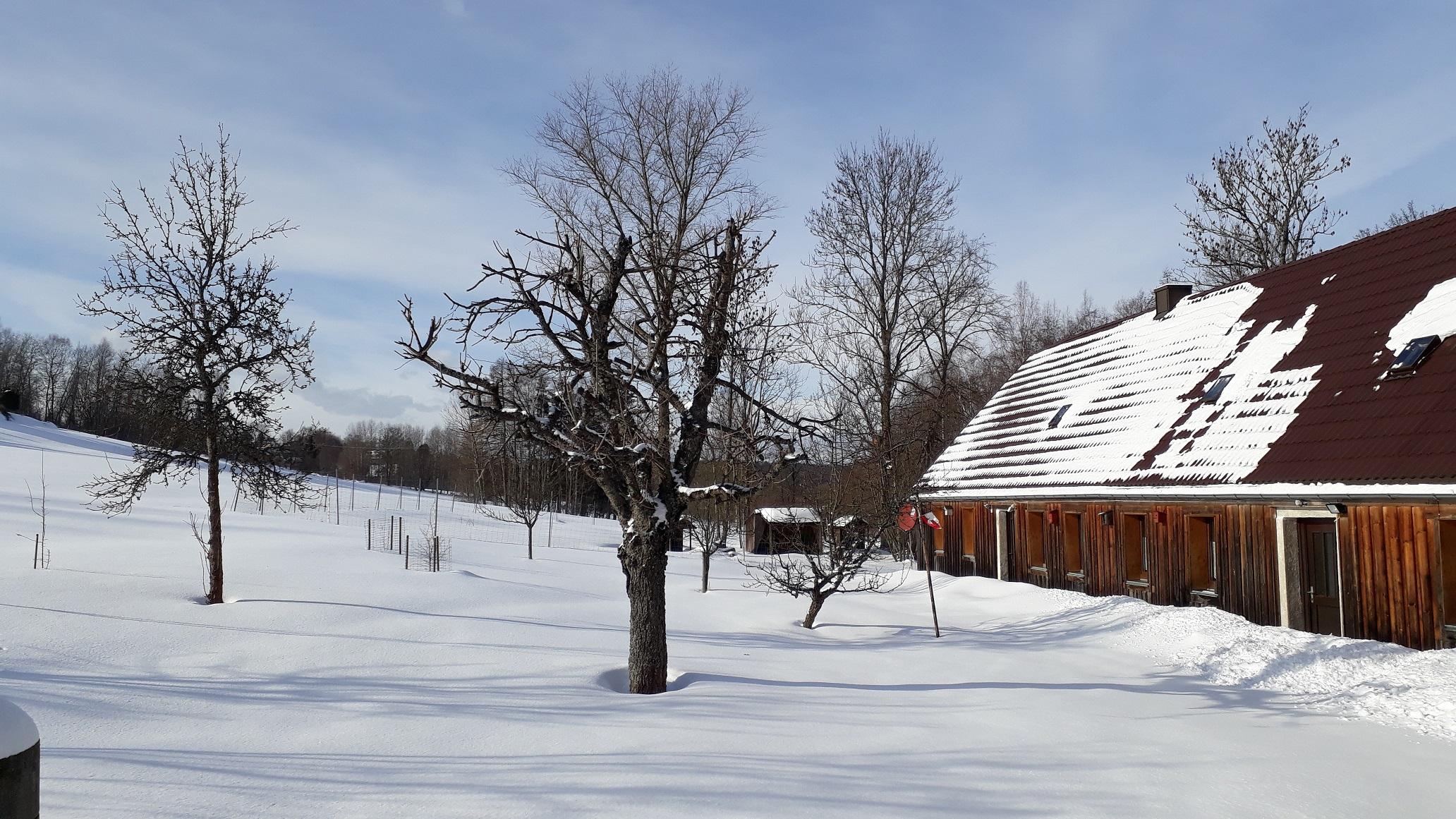 Winter Garten Hammerschmiede